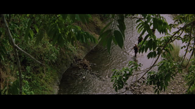 ms  pov troops of soldiers moving in jungle stream / tokyo, japan - rifle stock videos & royalty-free footage