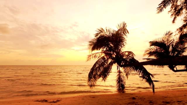Tropischen Strand, Sonnenuntergang und Palmen Baum am Abend