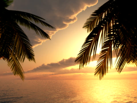 tropic paradise - exoticism stock videos & royalty-free footage
