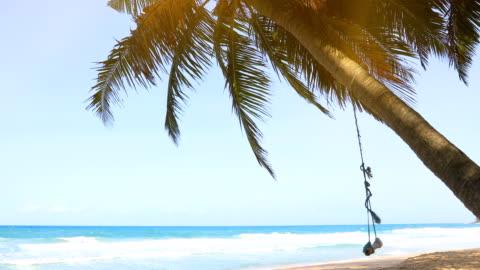 泰國普吉島巴東海灘的熱帶安達曼海景與天空和椰子棕櫚樹。4k - 披披群島 個影片檔及 b 捲影像