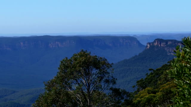 tropical australian landscape: blue mountains - victoria australia stock videos & royalty-free footage