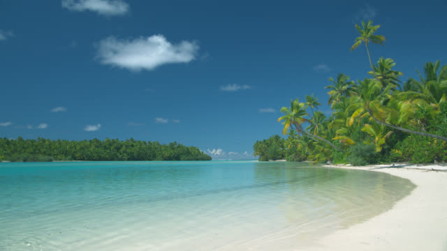 ws, tropical beach, aitutaki lagoon, aitutaki, cook islands - idyllic video stock e b–roll