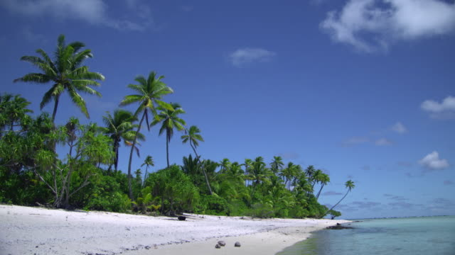 ws, tropical beach, aitutaki lagoon, aitutaki, cook islands - aitutaki lagoon stock videos & royalty-free footage