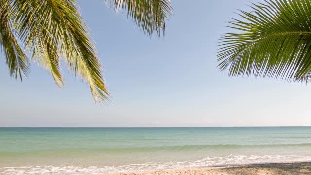 Tropischen Strand und grüne Lagune