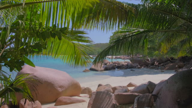 tropical beach anse lazio with typical granite rock formations and palm trees on praslin island , granitic seychelles , archipelago country in the indian ocean - seychelles stock videos & royalty-free footage