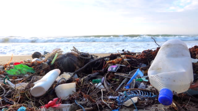 tropical beach filled with plastic garbage - bin bag stock videos & royalty-free footage