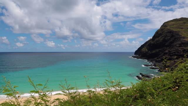 トロピカルなビーチの風景、ハワイ