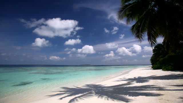 Tropical Beach, Maldives, Indian Ocean