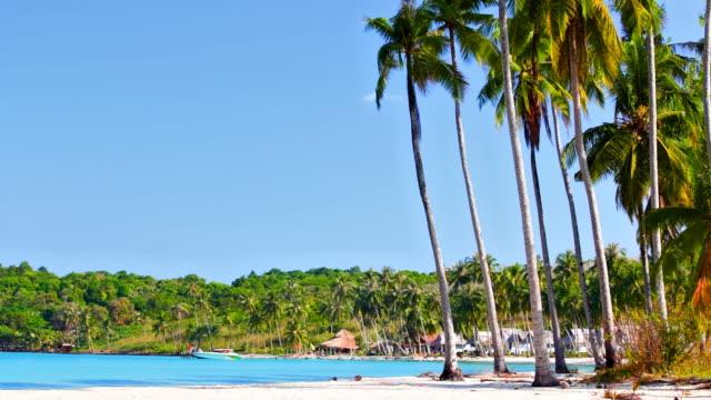 Tropischer Strand mit Palmen und das Meer