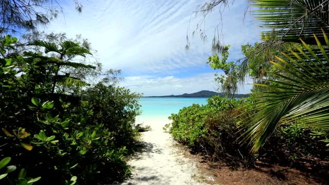 vídeos de stock e filmes b-roll de praia tropical, ilha do paraíso pines, nova caledónia - territórios ultramarinos franceses