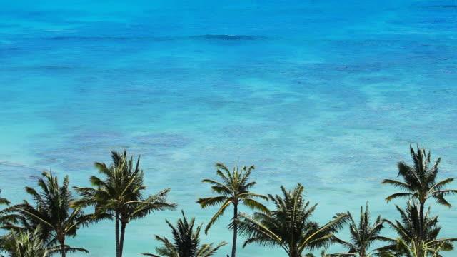 tropical beach paradise - honolulu stock videos and b-roll footage