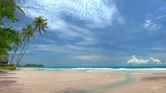 8k. tropical beach, sea, palm, sand, clouds - frangente video stock e b–roll