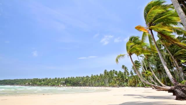 熱帯のビーチ、海の水、ブルースカイ - 波打ち際点の映像素材/bロール