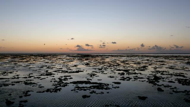 tropical beach sunrise, timelapse - gezeitentümpel stock-videos und b-roll-filmmaterial