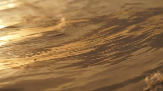 vídeos de stock, filmes e b-roll de pôr do sol da praia tropical - características do litoral