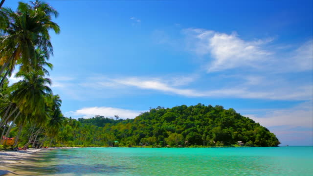 vídeos de stock e filmes b-roll de praia tropical - coastline