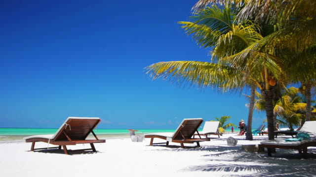 tropical beach - outdoor chair stock videos & royalty-free footage