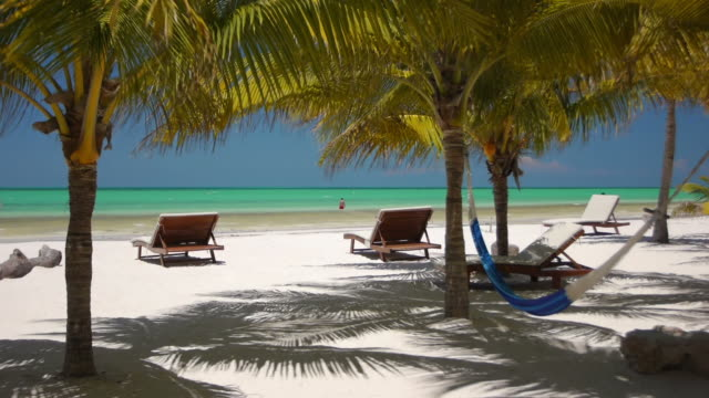 tropical beach - quintana roo stock videos and b-roll footage