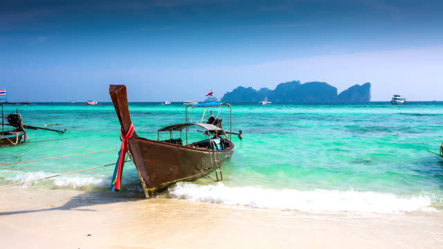 tropical beach - phi phi islands stock videos & royalty-free footage