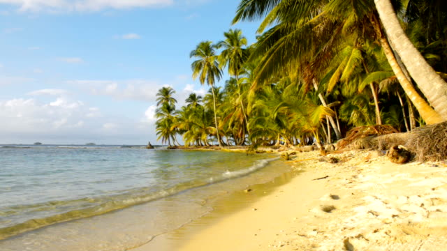 stockvideo's en b-roll-footage met tropisch strand - panama