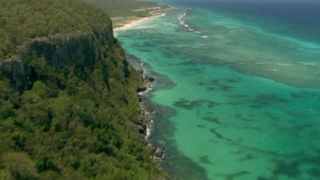 A tropical forest and cliffs run along the Jamaican coastline.