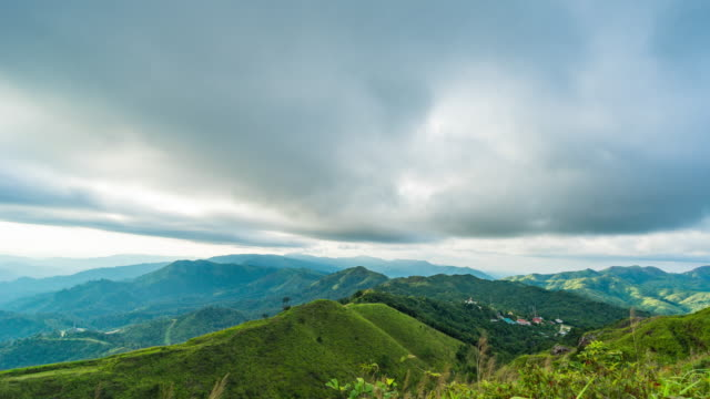 vídeos y material grabado en eventos de stock de bosque tropical y montaña con lluvia y las nubes de tormenta, video de lapso de tiempo - árbol tropical