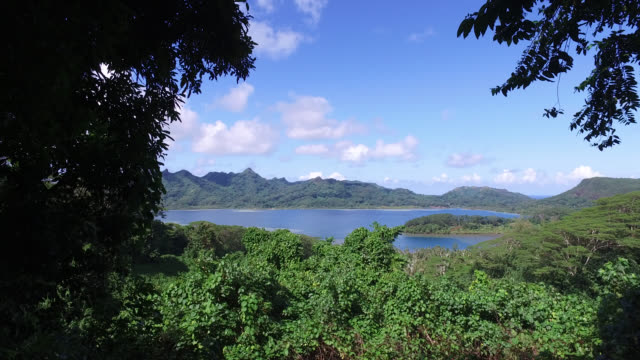 stockvideo's en b-roll-footage met tropical forest landscape with the sea - huahine