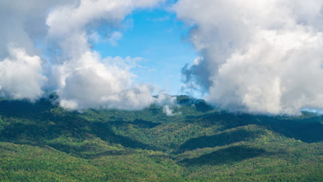 t/l cu tropical forest mountain blue sky moving cloud time lapse - mack2happy stock videos and b-roll footage