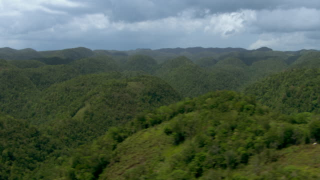 a tropical forest spreads across the mountainous landscape in jamaica. - lush stock videos & royalty-free footage