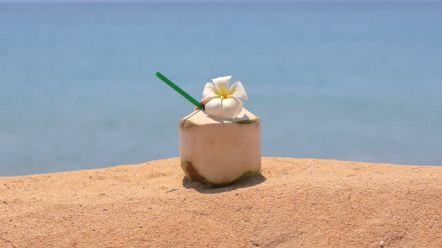 tropical fresh coconut cocktail decorated flower on tropical beach. - tropical cocktail stock videos & royalty-free footage