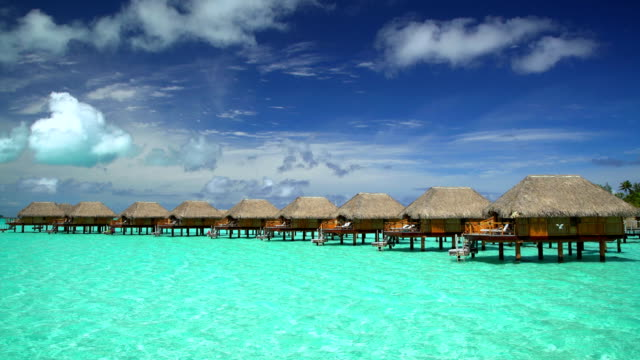 tropical holiday resort with overwater bungalows bora bora - polynesiskt ursprung bildbanksvideor och videomaterial från bakom kulisserna