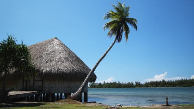 vidéos et rushes de tropical hut - île d'huahine