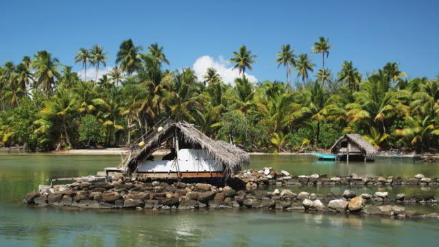 vídeos y material grabado en eventos de stock de tropical hut - polinesio