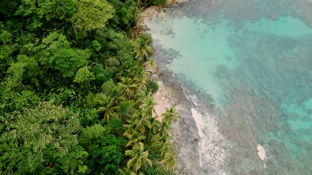 tropical island coastline. white beach and turquoise water. aerial view - panama stock videos & royalty-free footage