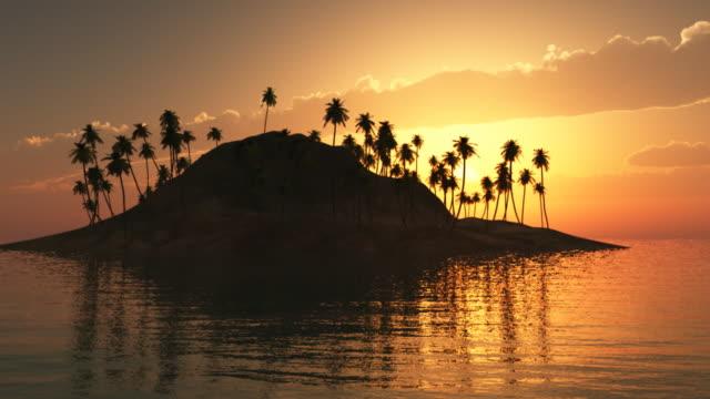 tropical island ii - tropical tree stock videos & royalty-free footage