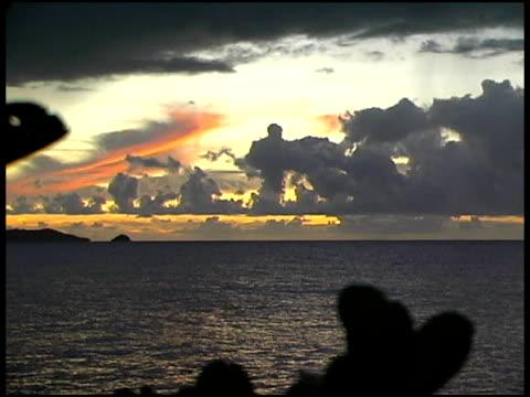 熱帯の島のサンライズ/サンセット - 熱帯の低木点の映像素材/bロール