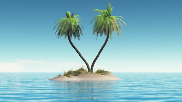 tropical island - tropical tree stock videos & royalty-free footage