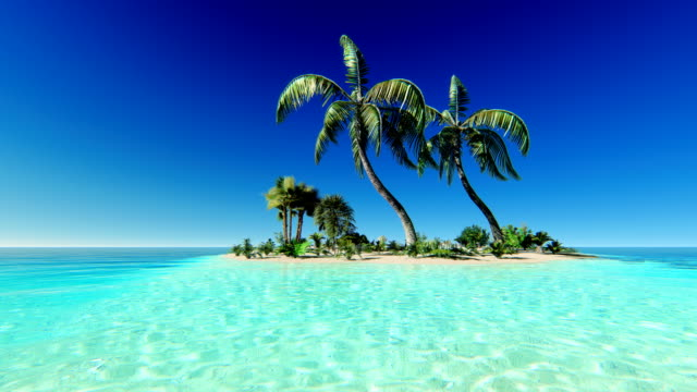 tropical island - tropical stock videos and b-roll footage