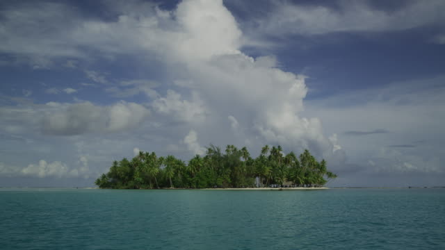 tropical island - isola di tahaa video stock e b–roll