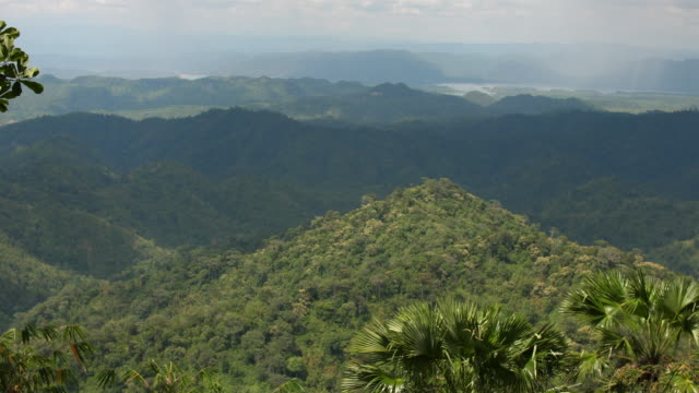 Tropische Berg- und Regenwald mit Morgensonne