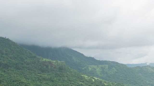 tropical mountains with fog flowing, time lapse video - condensation stock videos & royalty-free footage