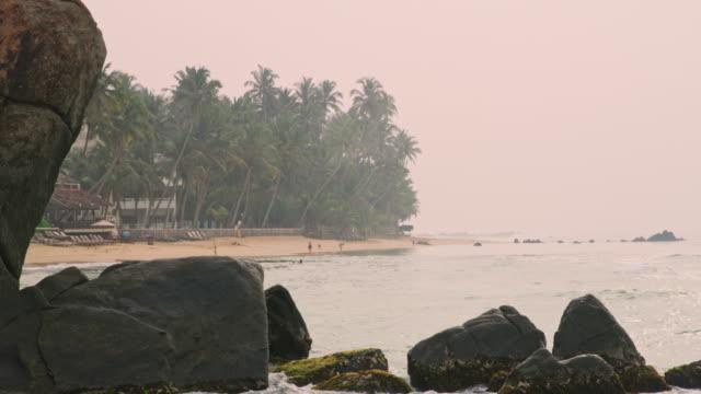 vidéos et rushes de plage de l'océan tropical ms, sri lanka - arbre tropical