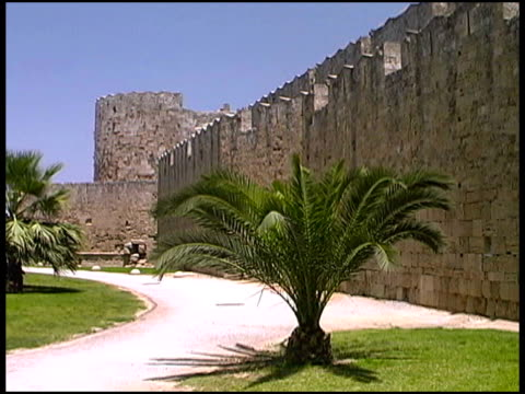 stockvideo's en b-roll-footage met tropical palm tree in front of castle - rodos dodecanese eilanden