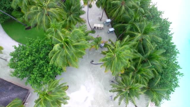 vídeos de stock, filmes e b-roll de tropical paradise, férias de luxo em maldivas-ayada island - hotel