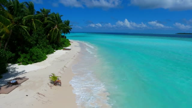 tropical paradise, luxury holiday in maldives - ayada island - palm tree stock videos & royalty-free footage