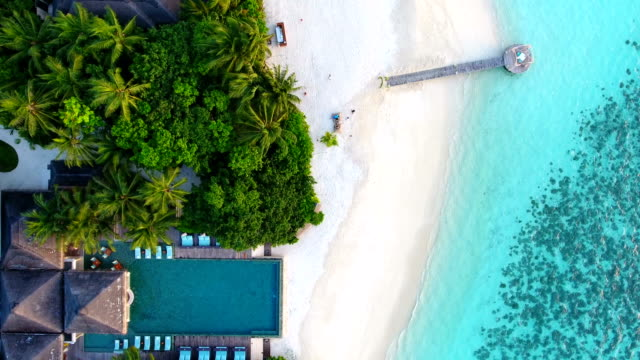 tropical paradise, luxury holiday in maldives - tropical climate stock videos & royalty-free footage