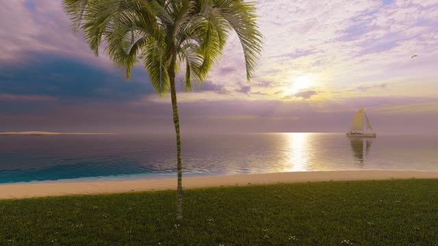 tropical paradise on the beach - tropical tree stock videos & royalty-free footage