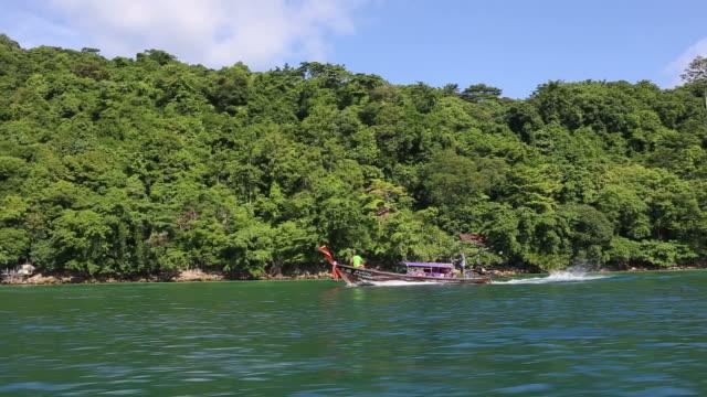 Tropical Paradise scene