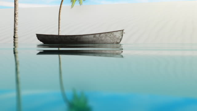 tropical paradise. - tropical tree stock videos & royalty-free footage