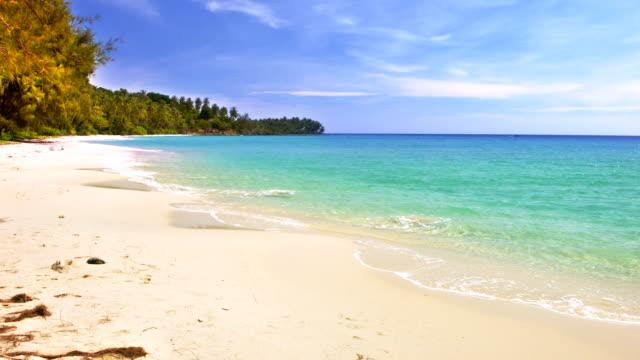 tropical paradise - polarizer stock videos & royalty-free footage